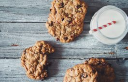 chocolate chip cranberry oatmeal cookies_hot for food