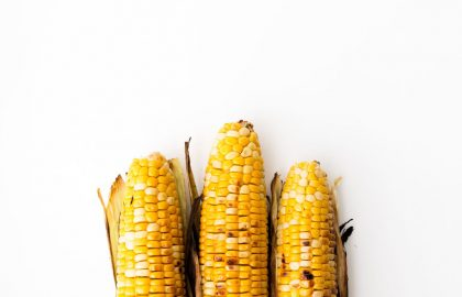 barbecued corn_hot for food