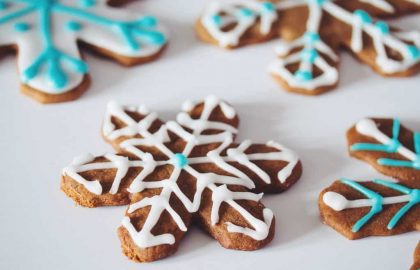 gingerbread snowflakes_hot for food